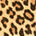 leopardo saltos altos
